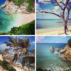 Loop Barbados - Reinventing Your Travel Experience