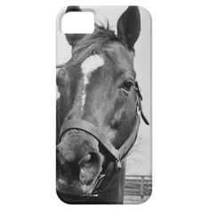 @@@Karri Best price          Man O' War Relaxing on His Farm iPhone 5 Case           Man O' War Relaxing on His Farm iPhone 5 Case so please read the important details before your purchasing anyway here is the best buyShopping          Man O' War Relaxing on His Farm iPhone 5 Case ple...Cleck Hot Deals >>> http://www.zazzle.com/man_o_war_relaxing_on_his_farm_iphone_5_case-179257646983339620?rf=238627982471231924&zbar=1&tc=terrest