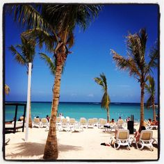 Riu Palace Montego Bay, for adults only, all-inclusive. tropicaltravel.net