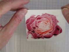 How to use reinkers for a watercolor technique. Tutorial uses Fifth Avenue Floral Set rose stamp and shimmery white card stock.  www.stampingmadly.com
