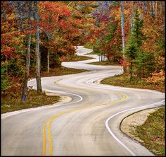 Just drove along this road today on our anniversary weekend!! So beautiful !      Curvy Road - Door County Wisconsin | Flickr - Photo Sharing!