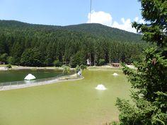 Acropark Laghetto Roana (Italy): Top Tips Before You Go - TripAdvisor