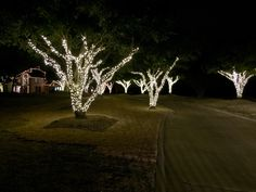Frisco Christmas Lights Installation