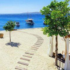Thursday blues  Mykonos Greece .     Location : Bill and Coo Coastal Suites  @billandcoowayoflife  #mykonos #greece #island #beautifulhotels ( by @danicaspi )