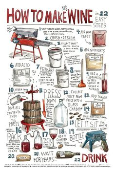 Infographic - Infographic Design Inspiration - how to make wine. Infographic Design : – Picture : – Description how to make wine. How To Make Red, Make Your Own Wine, How To Make Wine, Wine Education, Wine Cheese, Wine And Beer, Wine And Spirits, Home Brewing, Beer Brewing