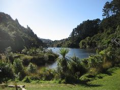 Zealandia, Wellington, New Zealand