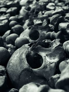among the stones lied the bones of those who had fallen during the war