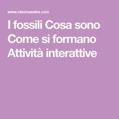 I fossili Cosa sono Come si formano Attività interattive