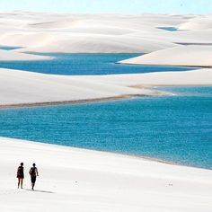 """Location: Private Freshwater Lagoons of Lençóis Maranhenses - Maranhão, Brasil. Photo Credit: @governoma"""
