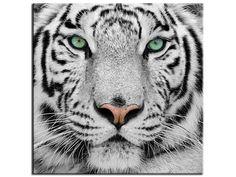 Tableau moderne Tigre de Sumatra dans la catégorie Animaux