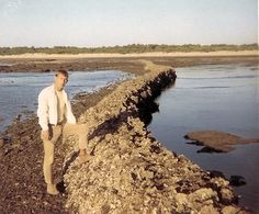 """These walls in the ocean near Rota are known as the """"Corrales de Rota"""" (Fish pens of Rota) (photo taken 1967-1968).  --- """"Andalusia's first designated Natural Monument comprises a small strip of the Atlantic Ocean with its beach, facing the towns of Rota and Chipiona. These plots reclaimed from the sea represent traditional ways of fishing that go back to Roman times."""" --  http://www.andalucia.org/en/natural-spaces/natural-landmark/corrales-de-rota/"""