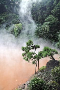 Beppu Hotsprings, Oita | Japan (by Purple Cloud)