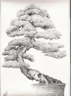Bonsai Drawing : bonsai, drawing, Bonsai, Sketch, Ideas, Bonsai,