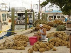 The sponge docks at Tarpon Springs, Florida.