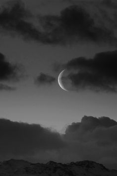 . moon ✔