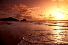 Image result for pictures of queensland beach nova scotia Business Networking, Business Management, Growing Your Business, Nova Scotia, Beautiful Beaches, Sea Shells, Sunrise, Queensland Australia, Pictures
