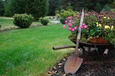 Google Image Result for http://www.jardim-central.com/ficheiros/jardinagem.jpg