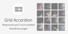 Grid Accordion - Responsive WordPress Plugin - CodeCanyon Item for Sale