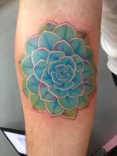 succulent tattoo just who i am pinterest flower tattoo ideas and search. Black Bedroom Furniture Sets. Home Design Ideas