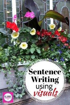 I Can Write a Senten