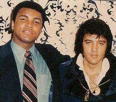 The King Elvis Presley and Muhammad Ali (em) Mohamed Ali, King Elvis Presley, Elvis Presley Photos, Martin Luther King, Elvis Cd, Star Trek Posters, Float Like A Butterfly, Gifs, Hometown Heroes