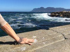 Straight from Cape Town (SA), Waita #bracelet enjoys the ocean! - Direttamente da Città del Capo (SA), il #bracciale Waita si gode il profumo dell'oceano! - gioielli, jewels, > acquista qui: http://monicatrevisi.com/shop/?filter_collezione=103