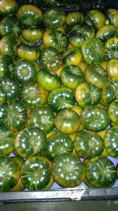 ¡Tenemos un nuevo cargamento de Tomate Raf! Espectacular... #hermanosmontes #alfruteropidemontes www.hermanosmontes.com