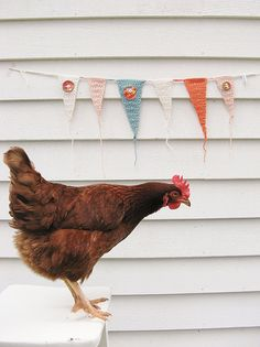 crocheted pennant banner is so sweet.  And I kinda like that little hen too.  ;)