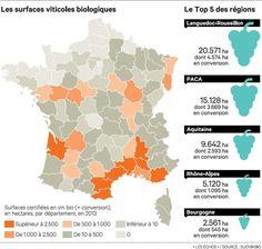 30/01/15. Bordeaux veut faire de son vin bio un produit équitable, Actualité des PME