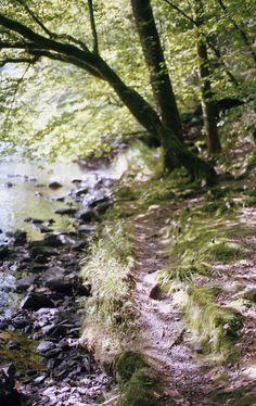 wandelen in de belgische ardennen, 2014 (hiking in the belgian ardennes)