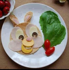 Kids snack or lunch using a flour tortillia, turkey, cheese