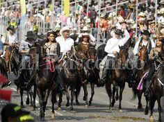 Debate: ¿se debe acabar la Cabalgata de la Feria de Cali? - diario El Pais