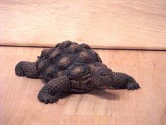 Desert tortoise by jshapeshifter.deviantart.com on @deviantART