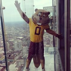 Sparty photobomb at the (Whatchutalkinabout) Willis Tower #BIG10K #Padgram