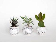 Set of 3 ceramic hand painted planters/ air planters/