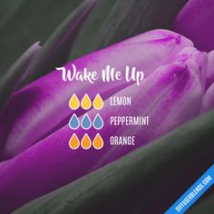 Wake Me Up - Essential Oil Diffuser Blend