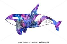 Galaxy orca or killer whale. Hand-drawn animal - Orcinus orca on the white background. Real watercolor illustration