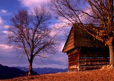 Feel the light - Koliba High Tatras, Cottages, Cabin, Lighting, House Styles, Beautiful, Home, Decor, Cabins