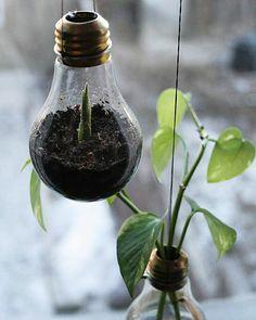 Light globe pot plants. Patio decor, recycled, indoor outdoor planting.