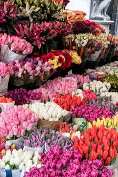 flower market Ljubljana #flowersaesthetic
