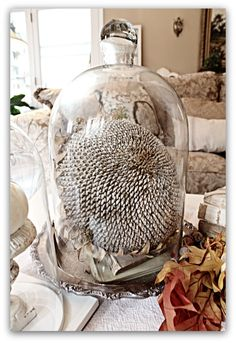 Beautiful centerpiece for the Holidays. Maybe add a piece of holly for color? Red berries? Sunflower center sprayed white.