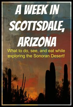 A Week in Scottsdale, Arizona- What to do, see, and eat while exploring the…