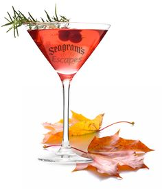 Seagram's Escapes Chilly Cranberry Margarita