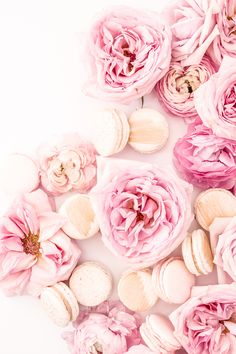 Haute Chocolate Styled Stock Photography - Flower Obsession
