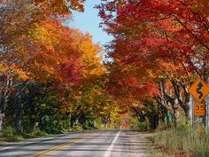M22 Fall Colors - Leland, MI by danenmolly, via Flickr