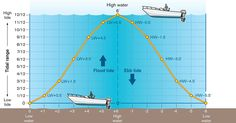 Kayak Fishing Anchor The Rule of Twelfths Plywood Boat Plans, Wooden Boat Plans, Wooden Boats, Sailing Cruises, Sailing Ships, Boating License, Boat Navigation, Sailing Lessons, Boating Tips