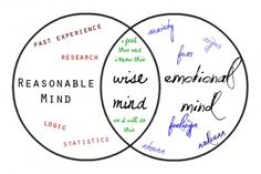 Reasonable-Wise-Emotional Mind . Listen to the Roller Coaster Song by Deborah Spiegel MT-BC to learn/teach how to get from emotion mind to wise mind (hint-through observing ,describing and participating)