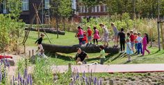 Deltaplantsoen is also a schoolyard the internal wild playspace provides space for outdoor classrooms and nature education alongside playful planting that changes with the seasons.  Into the Wild Deltaplantsoen / Grevelingenveld The Hague.  #play #playground #playscape #intothewild #dmau #deltaplantsoen #denhaag #speeltuin #schoolplein #publicspace #design #architecture #nature #grevelingenveld @openfabric