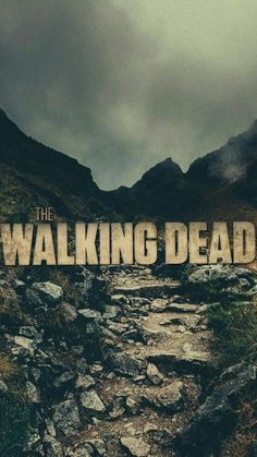 The Walking Dead (AMC) - picture for you The Walking Dead Poster, Walking Dead Tv Show, Walking Dead Zombies, The Walking Dead Tv, Series Canceladas, Walking Dead Wallpaper, The Walkind Dead, Der Tot, Disney Films