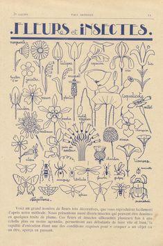 Motifs Art Nouveau, Motif Art Deco, Art Nouveau Pattern, Art Nouveau Design, Foto Poster, Poster Wall, Poster Prints, Art Room Posters, Photo Wall Collage